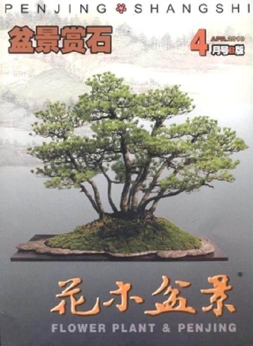 《花木盆景》杂志创刊20周年