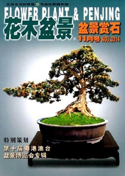 为花木盆景杂志创刊20周年喝彩