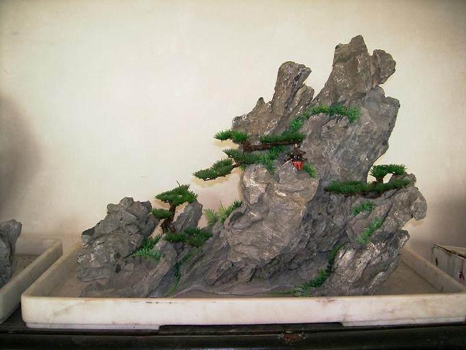 此次展出的300多盆古木盆景包括树桩盆景和山水盆景