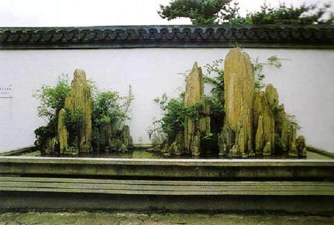 上海植物园专家支招冬季盆景养护要领