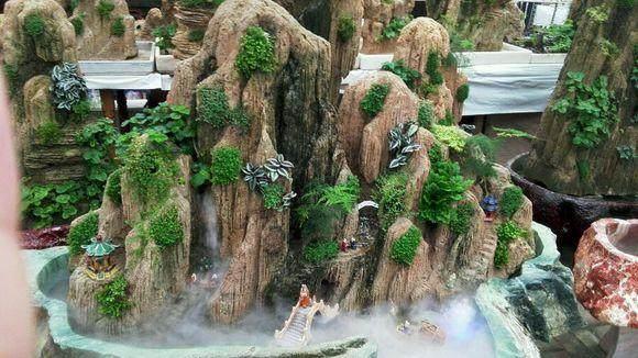 吸水石盆景上适合栽种什么植物?