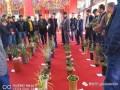 云南新益洲第三届兰花盆景博览交易会评奖办法与实施