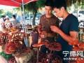 福建:霞浦县城举办灵芝盆景展览