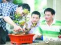 福建:福州盆景工岗位技能竞赛 妙手生花枯枝变盆景