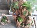 首届盆景展在青岛南山花鸟鱼石市场举行