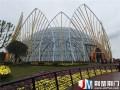湖北:荆门市菊花盆景造景夺目