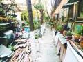 武汉两位老人义务修社区小路4年 摆盆景装饰