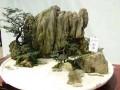 """十堰经济技术开发区 :""""盆景""""变""""丛林""""的发展智慧"""