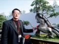 生肖榕树盆景——马到成功
