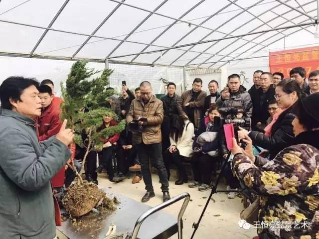 王恒亮盆景艺术公益大讲堂2017春季学习班(第六集)