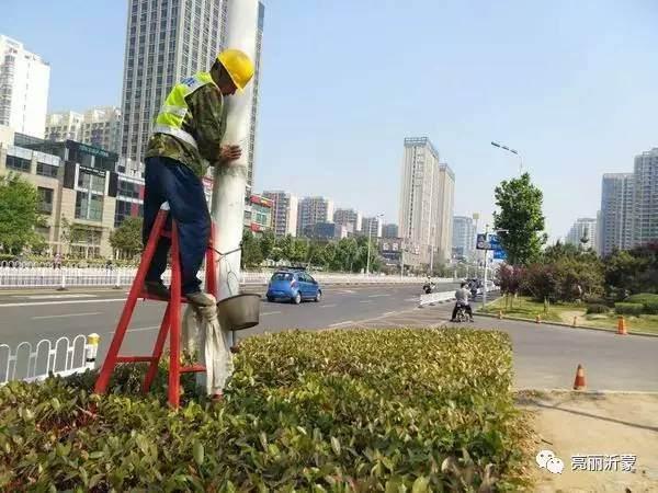 北京路设置的灯杆装饰盆景存在严重老化现象【图】