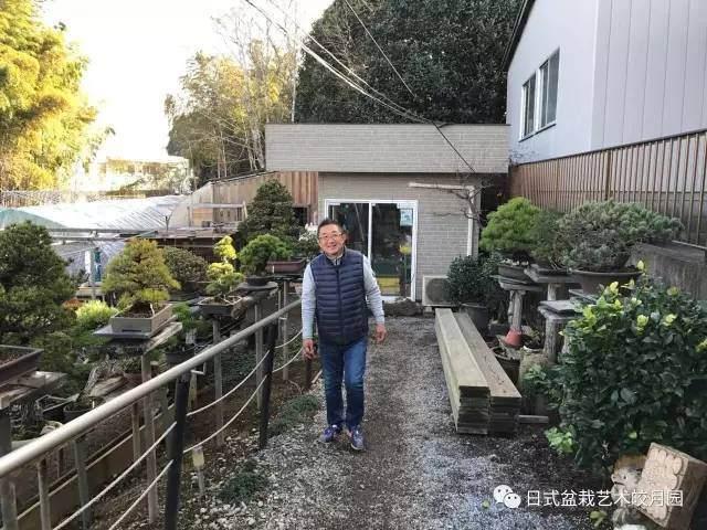 日本盆景松岡大师来皎月园指导盆景创作