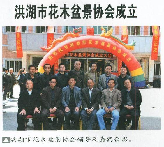 湖北盆景艺术协会洪湖分会