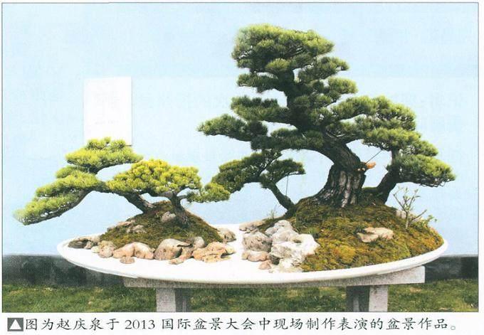 """2013 国际盆景大会有一个鲜明的主题""""传承文化,亲近自然"""""""