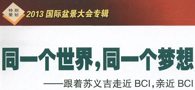 扬州的BCI国际盆景大会暨50周年庆典