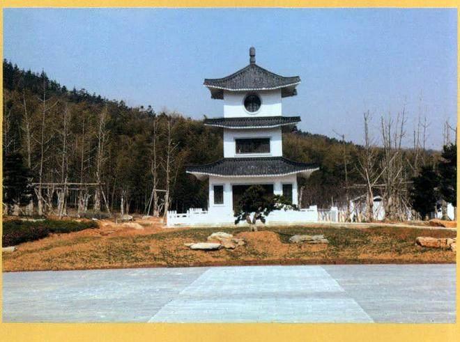 扬州举办的2013年国际盆景大会刚降下帷幕!