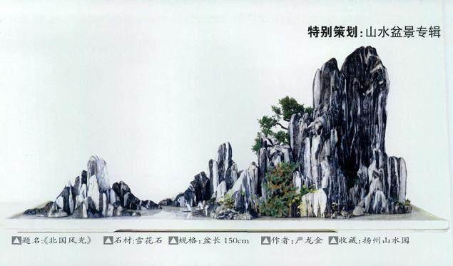 制作山水盆景的5个步骤【图解】