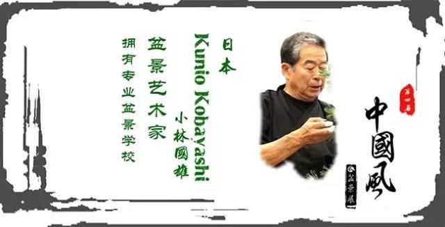 《日本-小林国雄-盆景创作表演》第四届中国风盆景展
