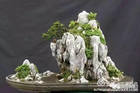 山水方寸:读懂園林水石盆景意蕴