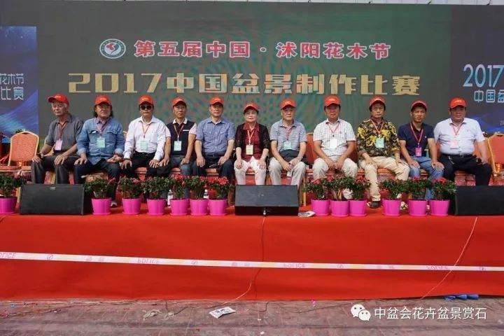 第五届中国 · 沭阳花木节盆景制作技术比赛篇