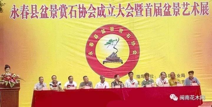 福建永春县盆景赏石协会成立大会暨首届盆景艺术展