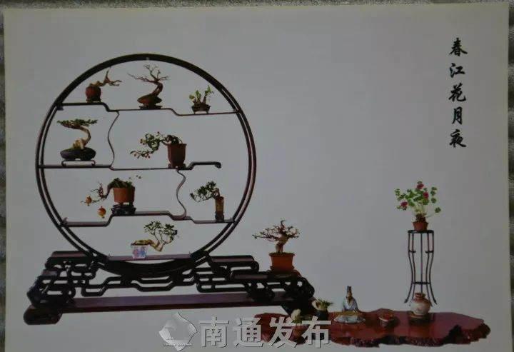 """如皋人王如生获""""BCI国际盆景大师""""称号!"""