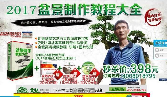 有人收徒弟:3天掌握岭南盆景 30天成为盆景制作师 可信么?