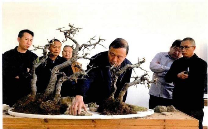 山东省第一期盆景艺术培训班在临沂雅鸣园开班