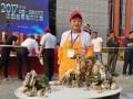 上海盆景艺术大师助阵海派盆景精品展