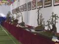 重庆市第十二届盆景艺术展在牡丹樱花世界举行