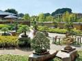 对日本盆景园案例的分析--大宫盆景村