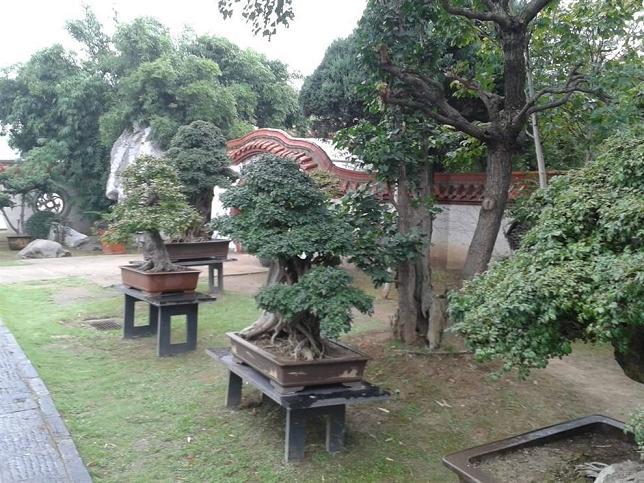 盆景园相关规划设计理论在实践项目中的运用