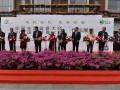 2018首届全国盆景大师作品展览亮相上海植物园