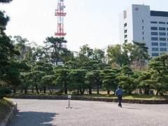 2011年亚太盆景展在四国高川县香川举行