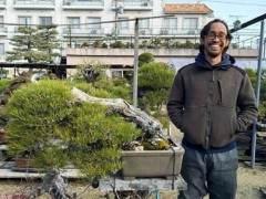 我在日本当盆景学徒的经历