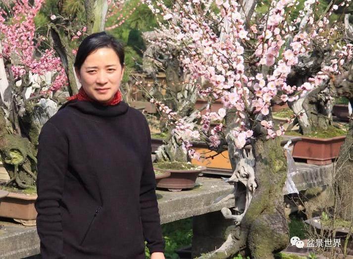 浙江台州盆景艺术家--陈文君