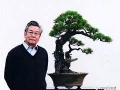 盆景大师:胡乐国之盆景人生