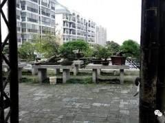 湖北咸宁有这样一个漂亮的盆景园