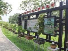 新塘瓜岭村举行书画盆景作品展