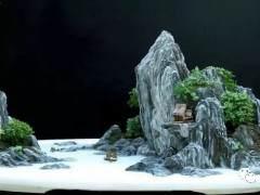 山水盆景怎么管理的4个技巧 图片