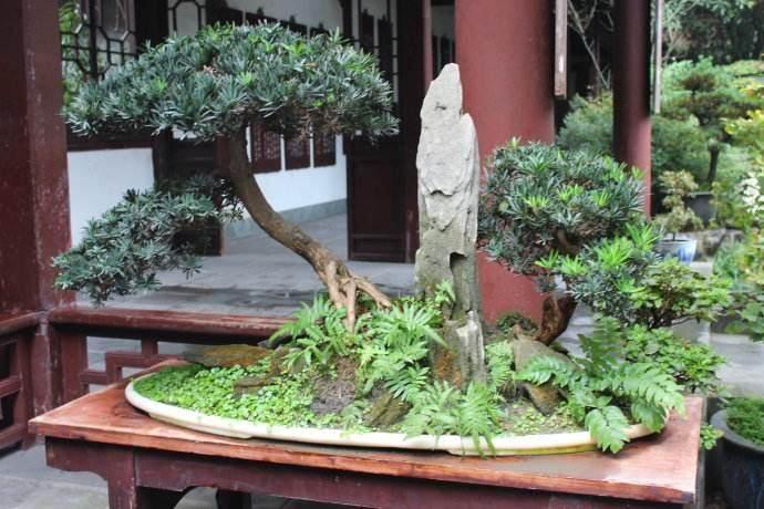 四川交流中心在成都杜甫草堂博物馆正式挂牌
