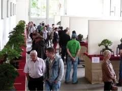 国际盆景俱乐部每年都会举办一次重要的国际会议