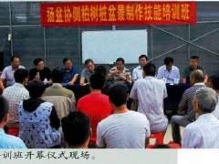 扬州盆景艺术家协会举办的侧柏盆景制作培训班
