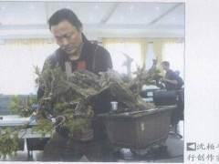 常州宝盛园协办的首届中国盆景高级研修班