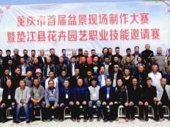 重庆市举办第十二届盆景艺术展暨精品兰花艺术展