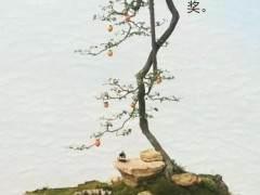 """重庆市花卉盆景协会""""初级技能培训""""开班啦"""