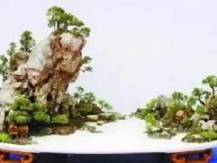 山水盆景的造型技艺
