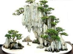 山水盆景通常分为平远山水 深远山水 高远山水