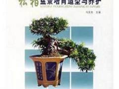 盆景新书《松柏盆景培育造型与养护》出版
