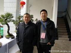胡乐国搞盆景50年 选取的树桩最贵也没超过4000元